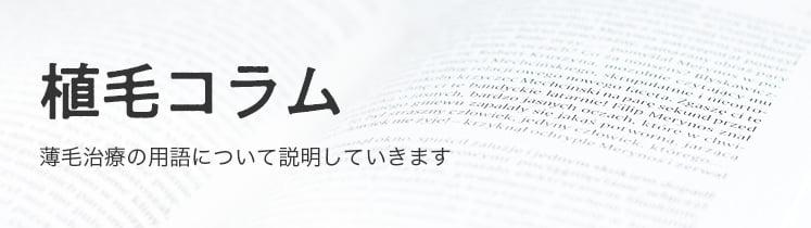 AGA・自毛植毛コラム